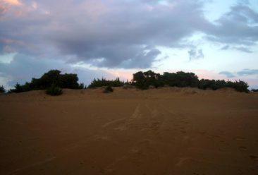 Κέρκυρα φωτογραφίες - στην παραλία του Χαλικούνα