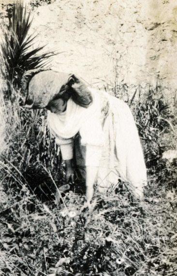 Παλιές φωτογραφίες της Κέρκυρας- εργαζόμενη στην ύπαιθρο το 1930