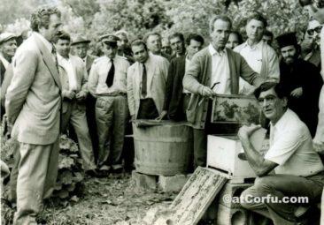 Benitses - beehive-1960