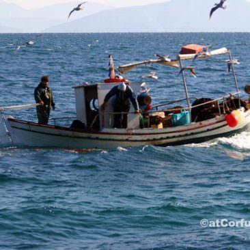 Benitses - fishermen
