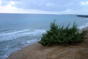 Corfu Halikounas beach
