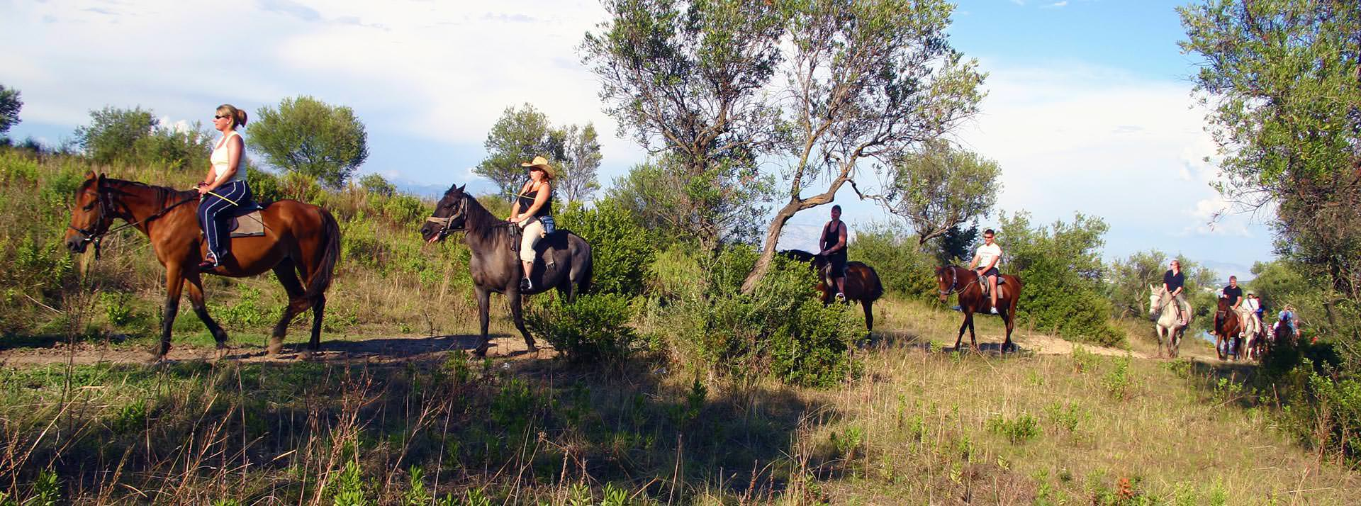 Horse riding in Roda north Corfu