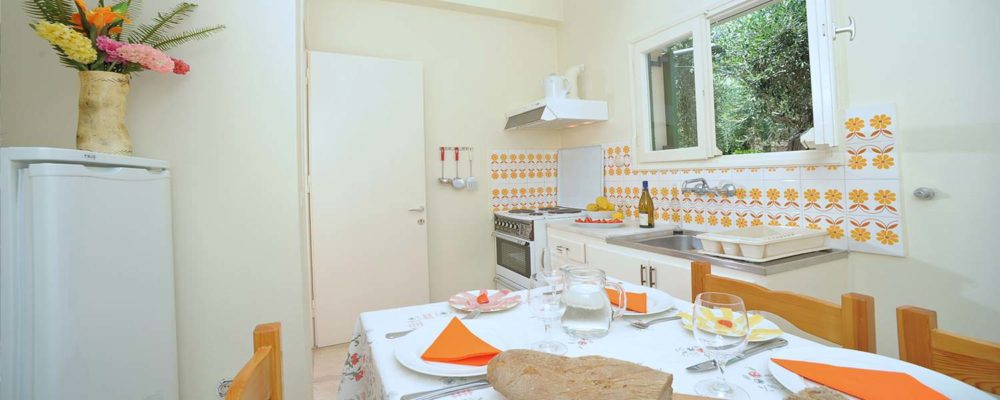 Passas apts fully equipped kitchen