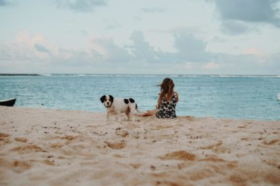 With a Dog on the Beach
